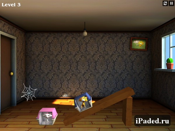 Crazy Cats Love для iPad
